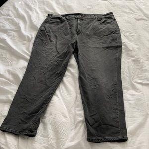 Brand new American Eagle plus sizes Jean size 22